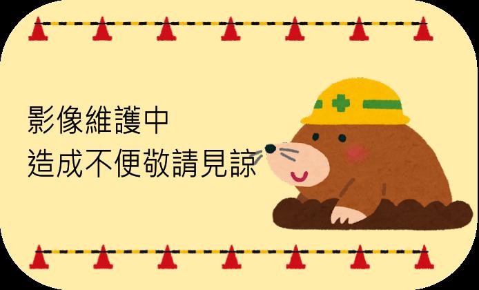 119-堤頂-民權東路6段(橋上)